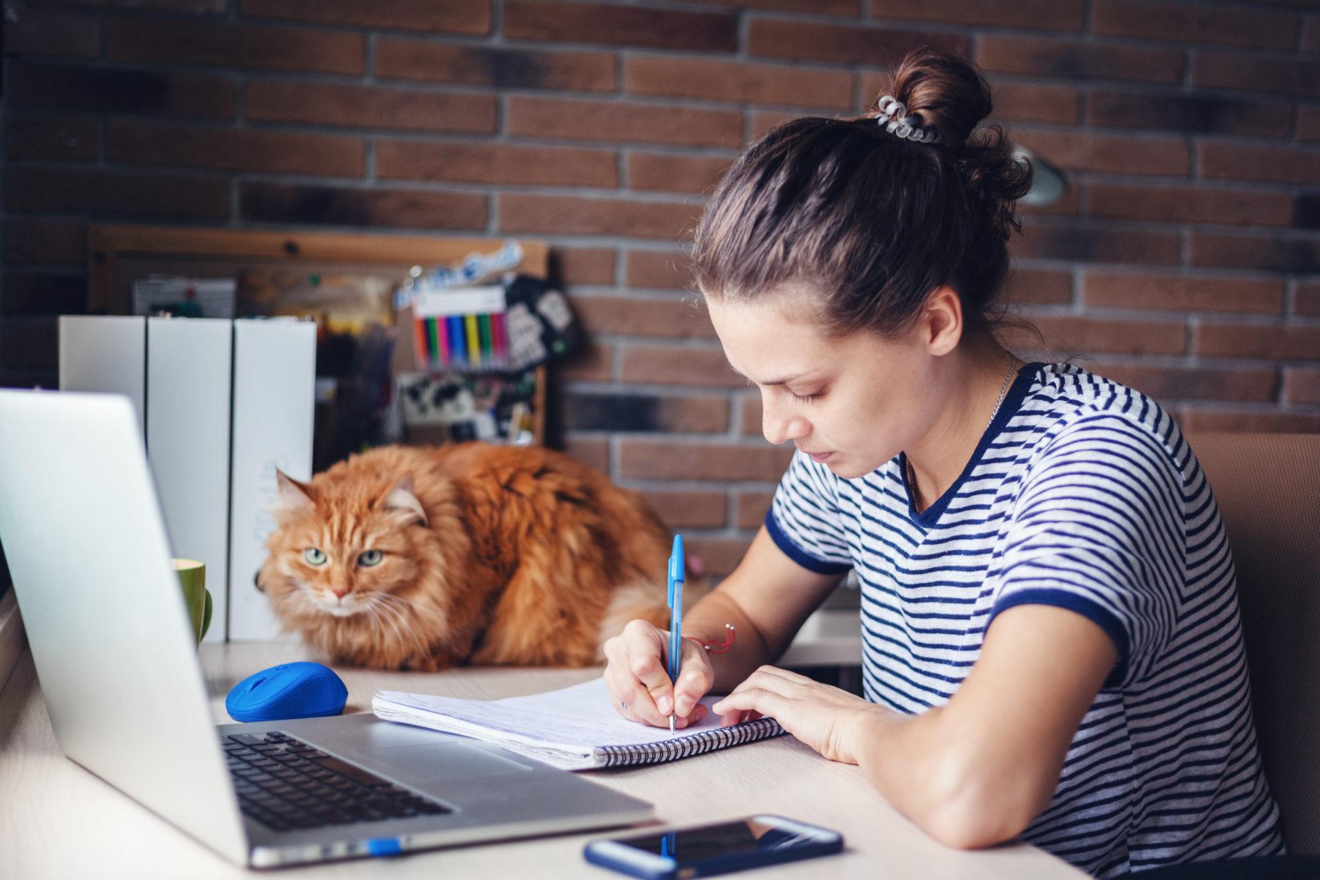 Как научиться удалённой работе работа бухгалтером удаленно на дому без опыта